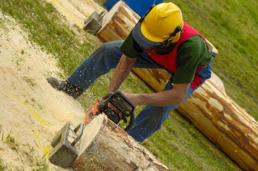 A crew member uses a chainsaw to expertly cut a log to a specific size.