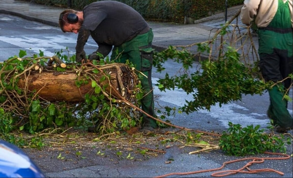 The crew clears a tree that has fallen and blocked the street during a storm.