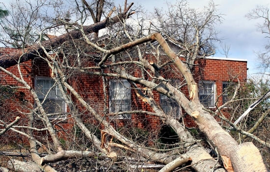 A tree has fallen on a building after a storm.